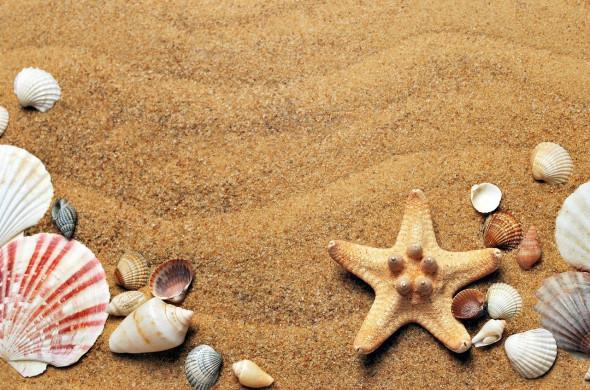 foto van strand, bij leestips